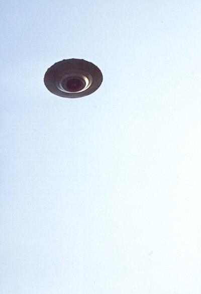 Hassenbol underside shot